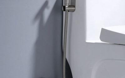 Toilet Shower
